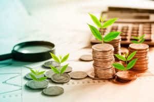 Aus Münzen wachsen Pflanzen