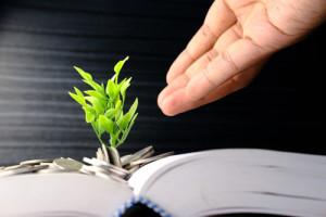 In einem aufgeschlagenen Buch liegen Münzen, aus denen eine Pflanze wächst.